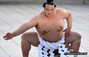 12 điều ít biết về sumo Nhật Bản - những võ sĩ trăm ký