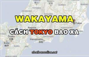 Wakayama cách Tokyo bao xa? Từ Tokyo đến Wakayama bao nhiêu km