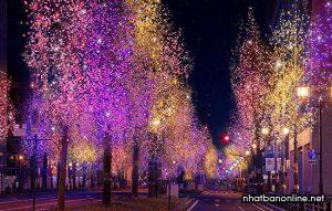 Lễ hội ánh sáng ở Osaka Nhật Bản
