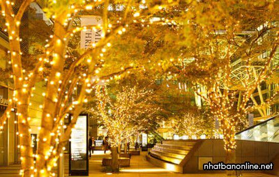 Lễ hội ánh sáng ở Tokyo Nhật Bản