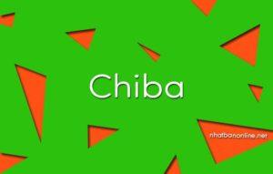 Chiba tỉnh số mấy