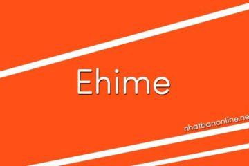 Tỉnh Ehime số bao nhiêu? Các tỉnh gần Ehime là tỉnh nào